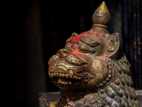 A golden tiger statue with red tika on its head at the Bagh Bhairab Temple   © Teagan Glenane, Australian Volunteers Program